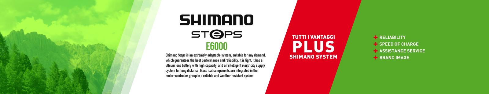 Shimano Steps E6000 | Be green